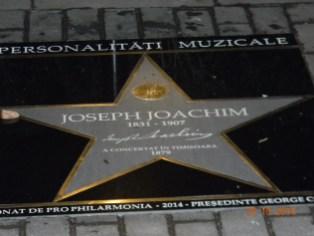 Aleea Muzicienilor stea Joseph Joachim (19)