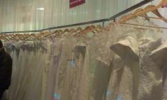 Nunta targ de nunti mirese Timisoara (8)