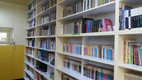 biblioteca scoala 19 Tm (3)
