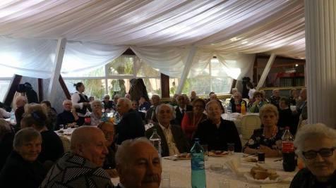 aniversare seniori tm nov 2015 (5)