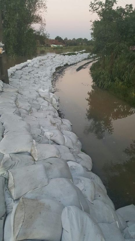 inundatii localitati timis 30.06 (9)