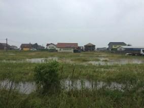 inundatii sacalaz 28.06 (12)