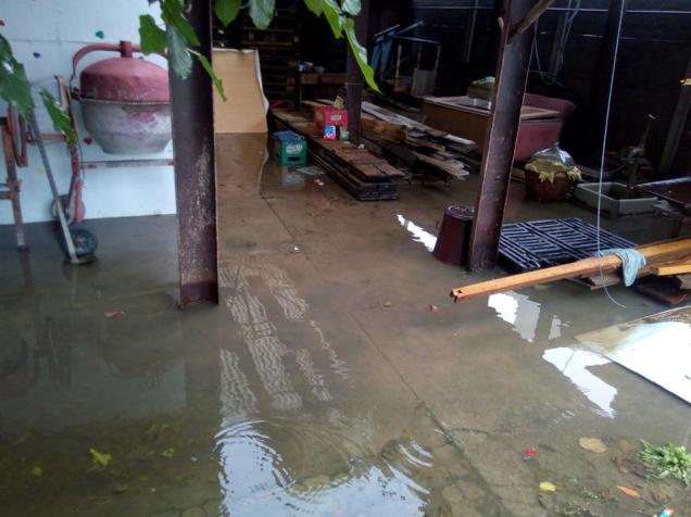 inundatii ploaie timi 22.08 (1)