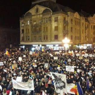 protest tm 2.02 5