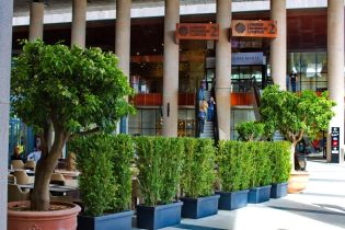 portocali mal iulius mall (2)