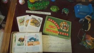170629_115340 Muzeul Jucariilor la Arad DSC00376