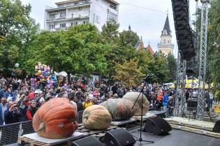 festivalul Dovleacului Kikinda septembrie 2017 (25)