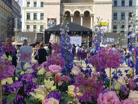 Timfloralis Piata Victoriei 2018 (5)