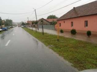 inundatii sannicolau mare (12)