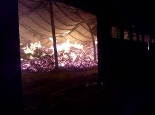 incendiu jimbolia (3)