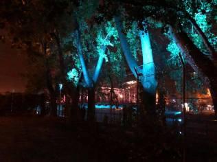 podul de fier iluminat Timisoara (3)