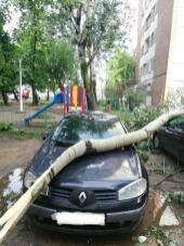 copaci rupti furtuna 19.05.19 (2)