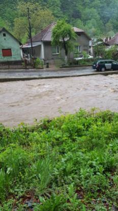 inundatii Timis mai 2019 (1)