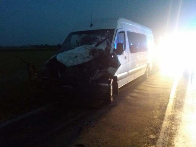 accident feroviar Timis (1)