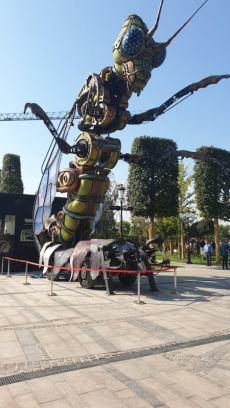 insecta Urias Iulius (1)