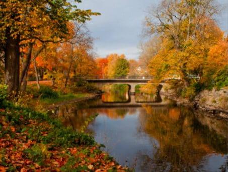 Julkalendern Lucka 7 Idamo – Forever Autumn
