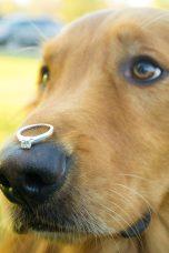 2014-10-11 Haley Evans Engagement 541
