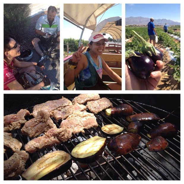 Heat training: 20mi cycling, 85°F; 1.5hr picking veggies & fruits, 98°F; Grilling, 106°F #lasvegas #cycling #gilcreaseorchard