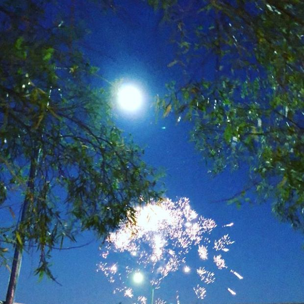 No shortage of fireworks in the NW of Vegas. Hope everyone had a fun 4th (and kept your doggos safe, too!) #4thofjuly