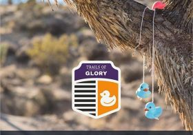 Join me on my fav singletrack in S NV… These trails are beginner-friendly and you get to see the Ducky Tree! DM for a code to save on that #ultrasignup fee. Link in bio. [instagram]