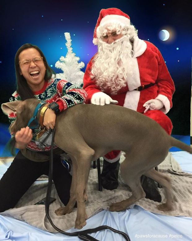It's Sterling's first Christmas season, so naturally, we go visit Santa... This wasn't how I thought it would go, though.  After waiting for our turn, Sterling did NOT want to hang with Santa, even with All. The. TREATS. 🤣 Thanks to Petco, for trying lol! Maybe next year! It was for a great cause anyway. 🏽#pawsforacause @petco #pawsin @trupanion