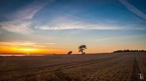 Sonnenuntergang im Westen Rügens
