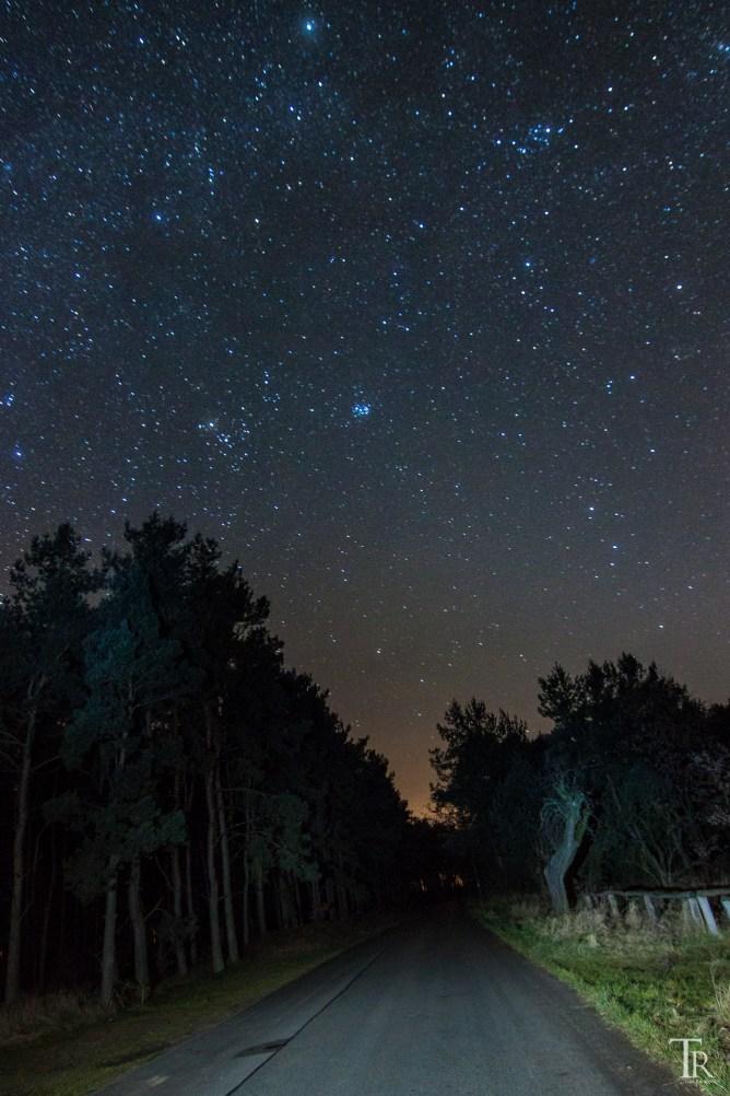 Winternacht im Sternenpark Westhavelland