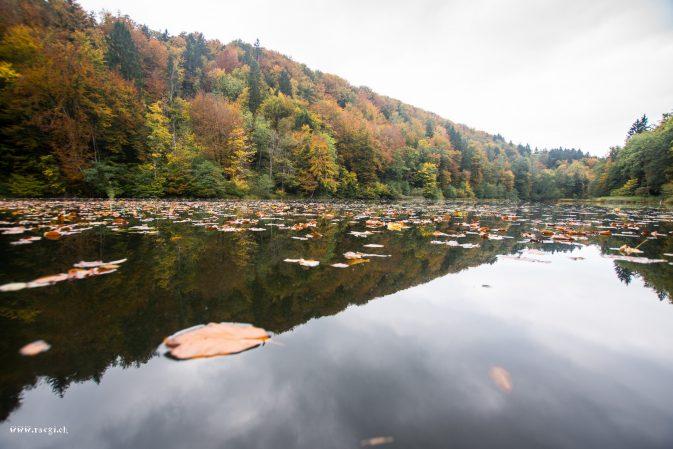 Herbstlicher Egelsee