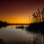 Morgendämmerung Naturschutzgebiet Katzensee