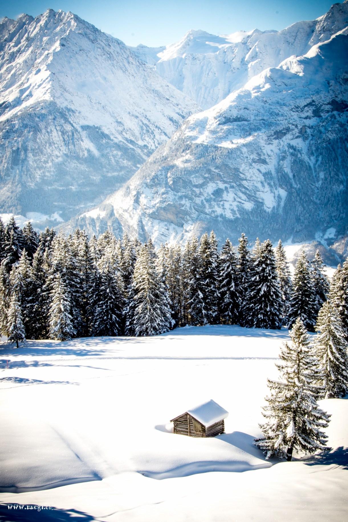 Berner Oberland