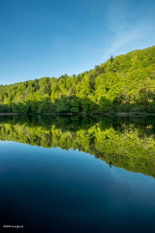 Egelsee Reflections