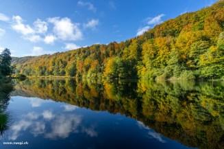 Herbstwald am Egelsee