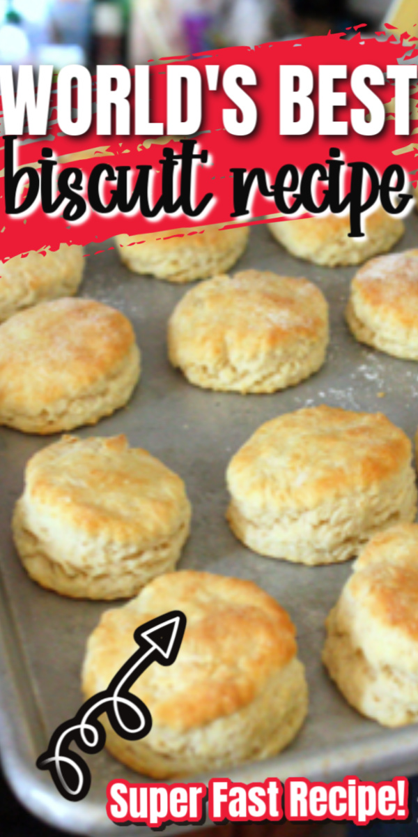 It's a keeper! This turns out great every time. Best quick biscuits recipe no yeast needed.