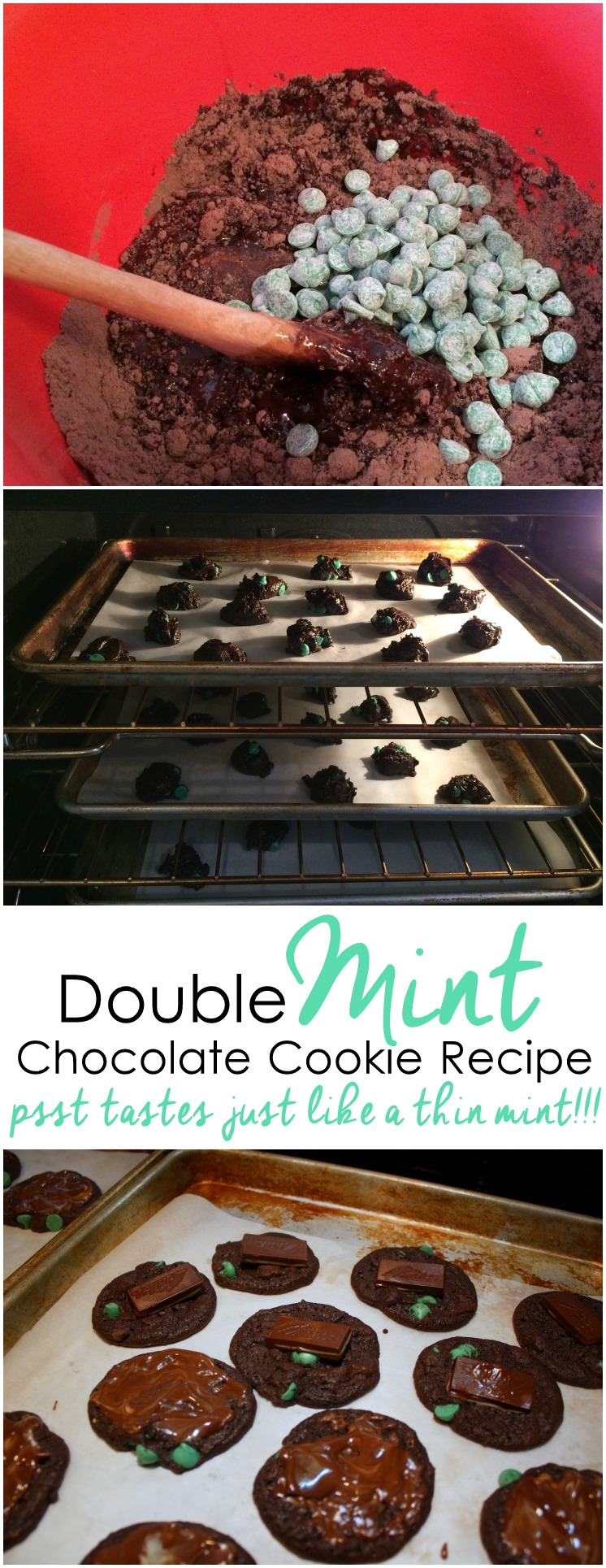 SO good. We make these all the time now. Just 4 ingredients and tastes just like girl scout thin mint cookies. Great chocolate dessert or treat recipe
