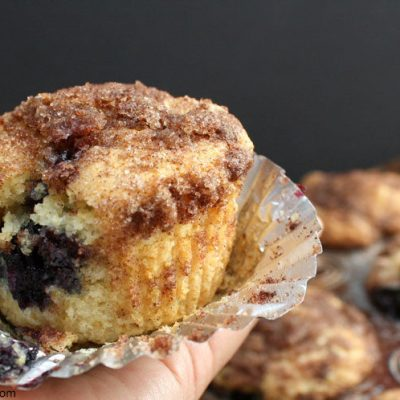 BEST Blueberry Muffin Recipe with Streusel Topping