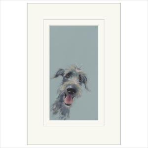 'Scruffy Mutt' By Nicky Litchfield Limited Edition Mounted Print