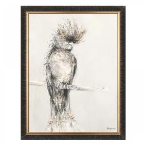 Red Tailed – Framed Print