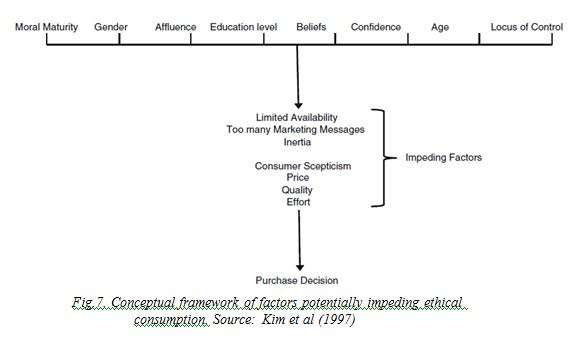 Conceptual framework of factors potentially impeding ethical consumption