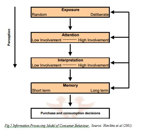 Information Processing Model of Consumer Behaviour