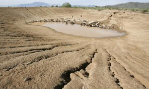 disappearing water holes