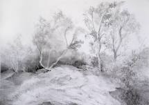 Ravelston Quarry by Adele Gregory