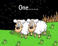 Counting sheep to get to sleep