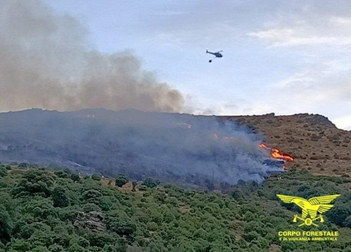 ancora-incendi-in-sardegna:-in-fiamme-due-ettari-di-macchia-mediterranea