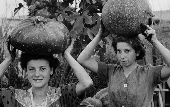 la-storia-dell'industria-alimentare-nelle-fotografie-in-mostra-alla-biennale-del-mast