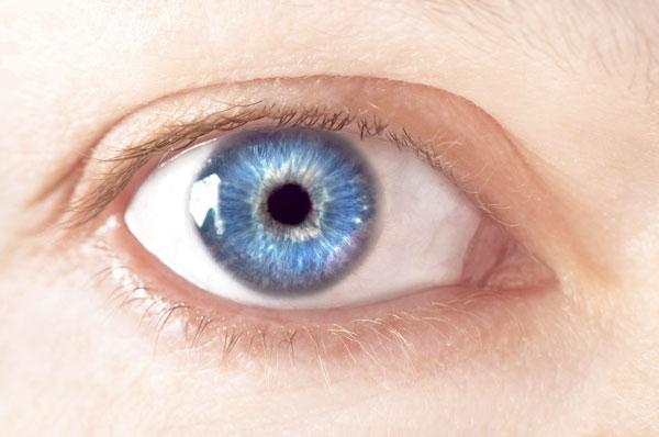 Las personas con ojos azules comparten antepasado • Clínica Rahhal ®