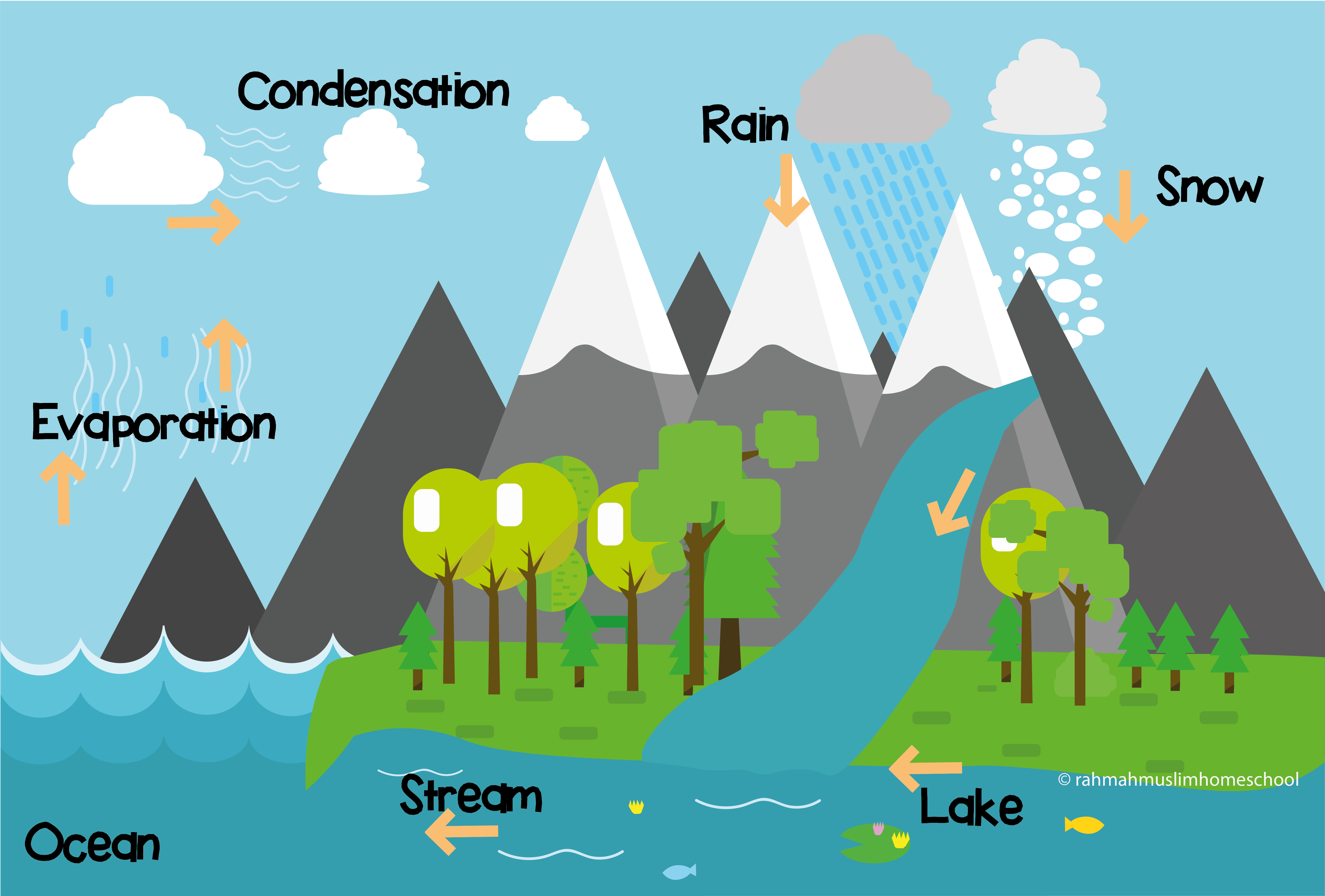 Science For Kids The Water Cycle