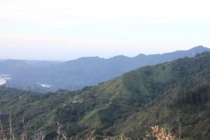Borinquen Landscape