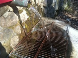 Fresh Mountain Spring-Ballou's-Jenny Jump State Forest