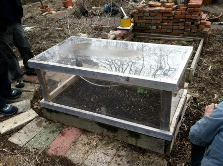 Finished planting in our cold frame, waiting for our first outdoor seedlings to sprout.