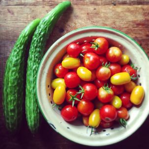 Suyo cucumbers and a mix of small cherry and grape tomatoes.